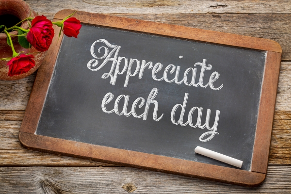 Appreciate each day - white chalk text on a vintage slate black