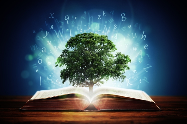 Book or tree of knowledge concept with an oak tree growing from