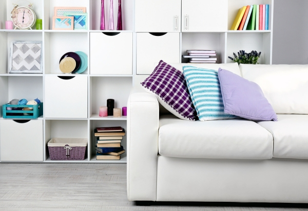 White living room with sofa and bookcase