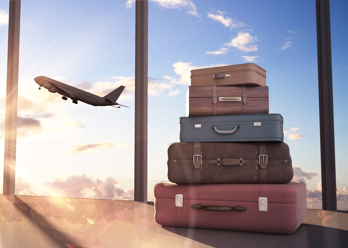 travel bags and airplane in sky